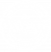 The Property Twins